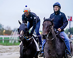 October 2, 2020: Max Player jogs as horses prepare for the Preakness Stakes at Pimlico Race Course in Baltimore, Maryland. Scott Serio/Eclipse Sportswire/CSM