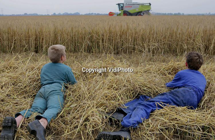 Foto: VidiPhoto..HETEREN - Nederlandse akkerbouwers zijn begonnen met de oogst van de wintergerst, de eerste graansoort van het jaar. In Heteren oogst loonbedrijf Gerritsen uit Renkum met een gloednieuwe en hypermoderne combine de gerst bij veehouder Kuipers uit Heteren. Apperatuur in de combine kan het vocht van het graan meten en de opbrengst per ha. Naast zijn veebedrijf heeft Kuipers zo'n 40 ha. aan gewassen. Een deel van de oogst heeft schade geleden door vraat van ganzen, duiven en kraaien.