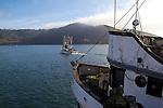 Garibaldi, fishing boats, crabbing season, Oregon coast, Tillamook County, Oregon, Pacific Northwest, North America, Oregon Coast,