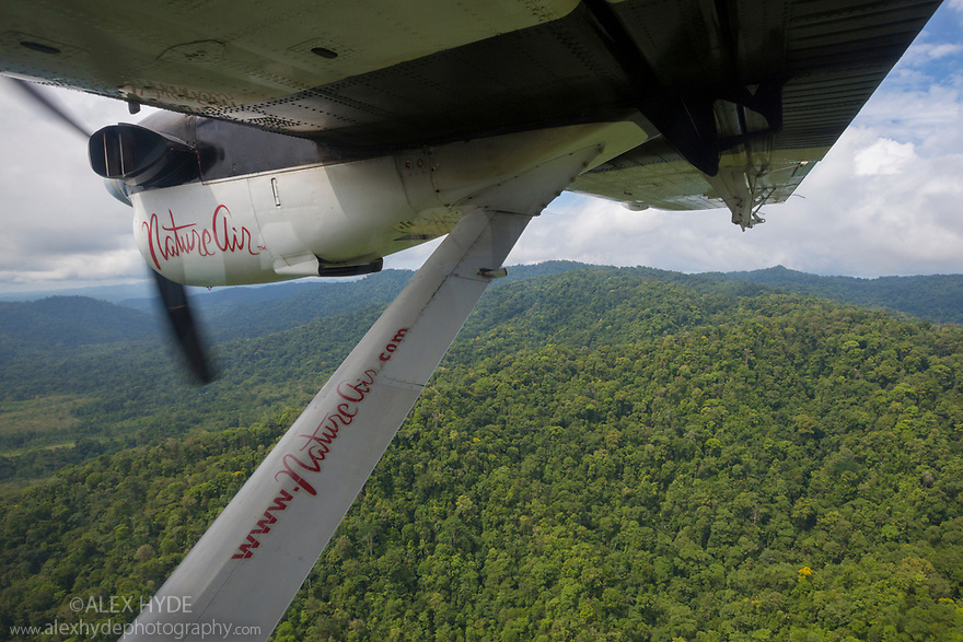 Aerial view of primary lowland tropical rainforest from the window of aircraft, Osa Peninsula, Costa Rica, May.