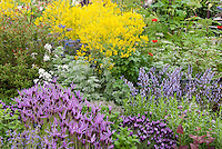 Herbs in Herb Garden by Jekka McVicka, flowers and herbs interplanted intensively, lavender, woad, etc