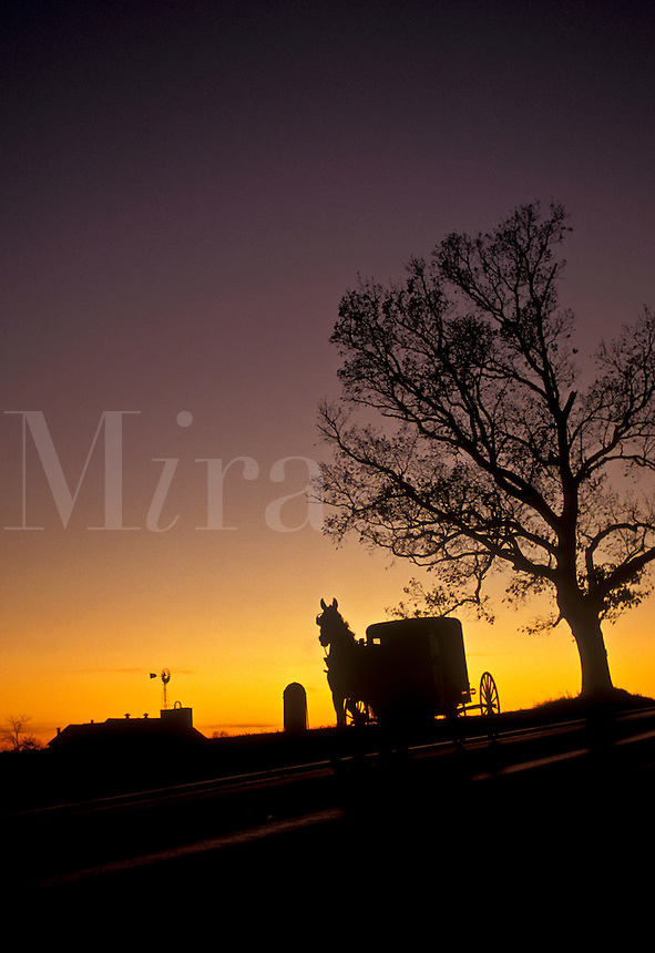 AJ3261, amish, horse and buggy, Amish Country, Lancaster County, Pennsylvania, A silhouette of an Amish horse and buggy trotting down a road at sunset in Pennsylvania Dutch Country in the state of Pennsylvania.