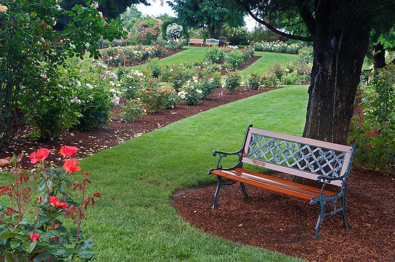 Bench in Heirloom Rose Gardens. Heirloom Gardens, Oregon