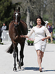 April 23, 2014: Pirate and Meghan O'Donoghue during the first horse inspection at the Rolex Three Day Event in Lexington, KY at the Kentucky Horse Park.  Candice Chavez/ESW/CSM