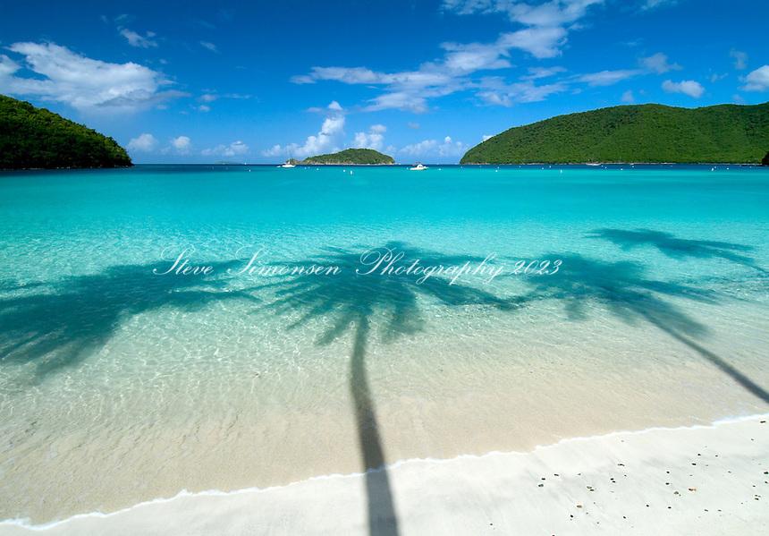 Maho Bay Palm Shadow.St John.US Virgin Islands