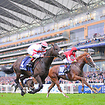 Scenes from around the track on British Champions Day on October 20, 2012 at Ascot Racecourse in Ascot, Berkshire, United Kingdom.  (Bob Mayberger/Eclipse Sportswire)