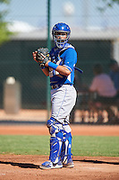 Kansas City Royals catcher Sebastian Rivero (2) during an Instructional League game against the Cleveland Indians on October 11, 2016 at the Cleveland Indians Player Development Complex in Goodyear, Arizona.  (Mike Janes/Four Seam Images)