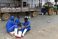 MOZAMBIQUE, Chimoio, chicken farm and slaughterhouse Agro-Pecuaria Abilio Antunes, lunch time for the workers / MOSAMBIK, Chimoio, Huehnerfarm und Schlachthaus Agro-Pecuaria Abilio Antunes, Mittagspause fuer Arbeiter, es gibt gekochte Huhnerreste