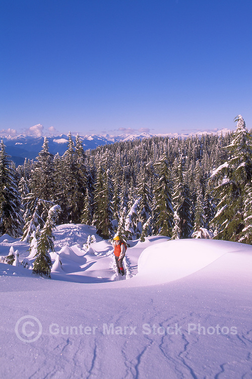 Woman hiking in Snow in Mount Seymour Provincial Park, in the Coast Mountains, North Vancouver, British Columbia, Canada