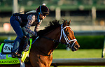 April 27, 2021:  Sainthood gallops in preparation for the Kentucky Derby at Churchill Downs in Louisville, Kentucky on April 27, 2021. EversEclipse Sportswire/CSM