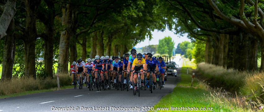 Jensen Plowright (Australia/Team BridgeLane) leads the peloton during stage four of the NZ Cycle Classic UCI Oceania Tour (Te Wharau-Admiral Hill Queen Stage) in Wairarapa, New Zealand on Saturday, 18 January 2020. Photo: Dave Lintott / lintottphoto.co.nz