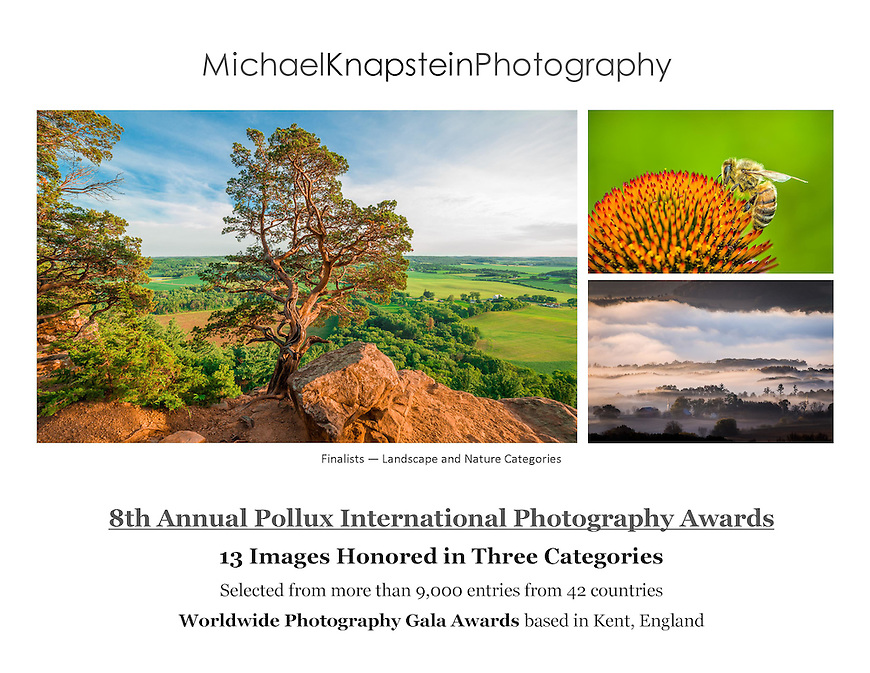 Michael Knapstein won 13 awards in the 8th annual Pollux Awards, based in Kent, England.