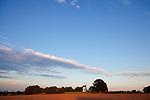 Europa, DEU, Deutschland, Nordrhein Westfalen, NRW, Rheinland, Niederrhein, Krefeld-Traar, Muehle, Windmuehle, Egelsbergmuehle, Abendstimmung bei Sonnenuntergang, Himmel, Wolken, Kategorien und Themen, Architektur, Architektonisch, Architekturstil, Bauwerk, Gebaeude, Historisch, Architekturfoto, Architekturphoto, Architekturfotografie, Architekturphotographie, Wetter, Himmel, Wolken, Wolkenkunde, Wetterbeobachtung, Wetterelemente, Wetterlage, Wetterkunde, Witterung, Witterungsbedingungen, Wettererscheinungen, Meteorologie, Bauernregeln, Wettervorhersage, Wolkenfotografie, Wetterphaenomene, Wolkenklassifikation, Wolkenbilder, Wolkenfoto....[Fuer die Nutzung gelten die jeweils gueltigen Allgemeinen Liefer-und Geschaeftsbedingungen. Nutzung nur gegen Verwendungsmeldung und Nachweis. Download der AGB unter http://www.image-box.com oder werden auf Anfrage zugesendet. Freigabe ist vorher erforderlich. Jede Nutzung des Fotos ist honorarpflichtig gemaess derzeit gueltiger MFM Liste - Kontakt, Uwe Schmid-Fotografie, Duisburg, Tel. (+49).2065.677997, archiv@image-box.com, www.image-box.com]