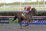 January 24, 2015:  Birdatthewire with jockey Irad Ortiz Jr on board wins the $200K Forward Gal Stakes G2 at  Gulfstream Park in Hallandale Beach, Florida. Liz Lamont/ESW/CSM