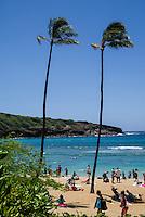 Hawaii 7-28-16