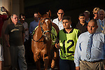 Top Billing had his supporters being sent off as the favorite. In the end the chestnut son Curlin didnt have enough time to circle the field and finished third. Scenes from Fountain of Youth Day. Gulfstream Park, Hallandale Beach Florida. 02-22-2014