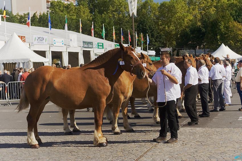 Le Festival de l'élevage et du veau de lait élevé sous la mère..Concours de chevaux, place de la Guierle.