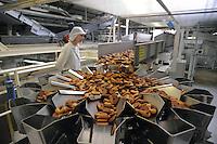 - Novara, stabilimento Pavesi (gruppo Barilla), linea di produzione dei biscotti Abbracci<br /> <br /> - Novara, Pavesi plant (Barilla Group), production line of Abbracci biscuits