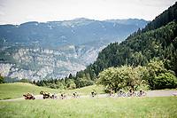 an elite group lead the race through the beautiful French Alps<br /> <br /> Stage 5: Megève to Megève (154km)<br /> 72st Critérium du Dauphiné 2020 (2.UWT)<br /> <br /> ©kramon
