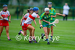 Kerry's Patrice Diggin attempts to get past Louise Duggan   of Derry in the Intermediate Camogie championship
