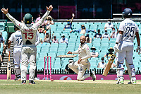 11th January 2021; Sydney Cricket Ground, Sydney, New South Wales, Australia; International Test Cricket, Third Test Day Five, Australia versus India; Matthew Wade of Australia appeals as Nathan Lyon of Australia looks on