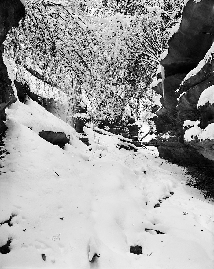 """Snow Fall in Bear Hollow""<br />