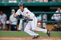 Lakeland Flying Tigers Cole Peterson (9) attempts to lay down a bunt during a Florida State League game against the St. Lucie Mets on April 24, 2019 at Publix Field at Joker Marchant Stadium in Lakeland, Florida.  Lakeland defeated St. Lucie 10-4.  (Mike Janes/Four Seam Images)