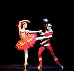 The Royal Ballet The Firebird