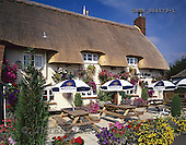 Tom Mackie, FLOWERS, photos, Bottle & Glass Pub, Gibraltar, Buckinghamshire, England, GBTM966173-1,#F# Garten, jardín