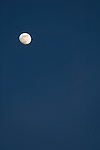 Windansea, La Jolla, California; nearly full moon rising against a twilight blue sky
