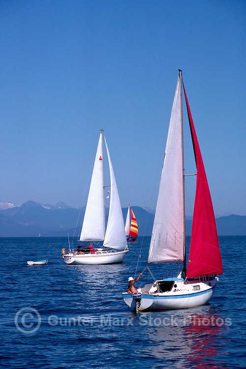Sailboats sailing in Howe Sound near Vancouver, BC, British Columbia, Canada
