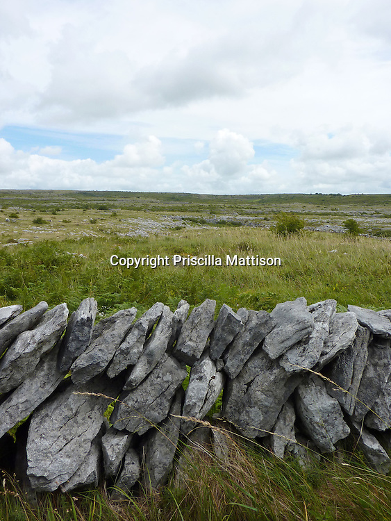 County Clare, Republic of Ireland - July 17, 2011:  A low stone wall stands in the Burren.