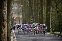 peloton up Tiegemberg<br /> <br /> Nokere Koerse 2014