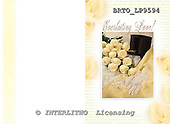 Alfredo, WEDDING, photos, BRTOLP9594,#w# Hochzeit, boda