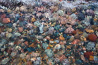 """""""Watercolor #1"""" - Lake Superior beach rock, Two Hearted Rive"""