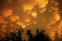 Mammatus clouds at sunset over Seagoville Texas after the passage of severe thunderstorms in July.