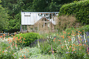 Greenhouse and garden, early June. Planting includes Anthemis cupaniana, Euphorbia oblongata, Geum 'Totally Tangerine', and Stipa gigantea.