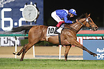March 27, 2021: LORD NORTH #10 ridden by Frankie Dettori wins The Group 1 Dubai Turf for John Gosden  on Dubai World Cup Day, Meydan Racecourse, Dubai, UAE. Shamela Hanley/Eclipse Sportswire/CSM