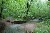 Muddy trail, Edwin Warner Park, Nashville, Tenn.