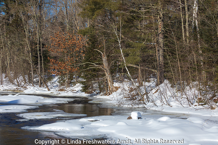 The east fork of the Chippewa River in northern Wisconsin.