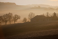 Europe/France/Midi-Pyrénées/32/Gers/Saint-Puy: Vallonnements de la campagne gasconne à l'aube