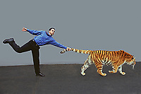 Tiger by the tail.<br /> <br /> Model Released: Barry Davis