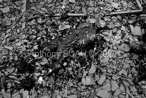 Korineca, Kosovo  <br /> 1999<br /> <br /> The remains of one of five people that have been executed and burnt in Korineca, southern Kosovo. In one day several thousands of Serbian military entered the village killing/burning everything.