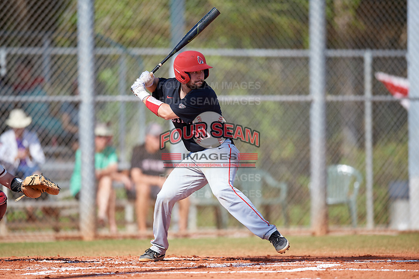 Ball State Cardinals catcher Chase Sebby (20) bats during a game against the Saint Joseph's Hawks on March 9, 2019 at North Charlotte Regional Park in Port Charlotte, Florida.  Ball State defeated Saint Joseph's 7-5.  (Mike Janes/Four Seam Images)