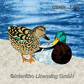 Simon, REALISTIC ANIMALS, REALISTISCHE TIERE, ANIMALES REALISTICOS, innovative, paintings+++++KateFindlay_DuckDitty2,GBWR160,#a#, EVERYDAY