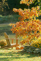 Adirondack chair in afternoon light
