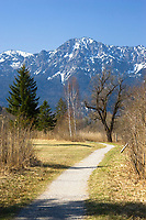 path and mountain, foothills of the alps, Upper Bavaria, Germany