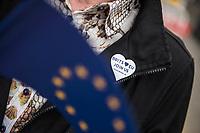 Protest in Berlin gegen den Brexit anlaesslich der formellen Einleitung des Brexit durch die britische Regierung am Mittwoch den 29. Maerz 2017. Britsche Berliner sangen nahe dem Brandenburger Tor zwischen der Europaeischen Vertretung und der Botschaft von Gross Britannien die Europahymne.<br /> 29.3.2017, Berlin<br /> Copyright: Christian-Ditsch.de<br /> [Inhaltsveraendernde Manipulation des Fotos nur nach ausdruecklicher Genehmigung des Fotografen. Vereinbarungen ueber Abtretung von Persoenlichkeitsrechten/Model Release der abgebildeten Person/Personen liegen nicht vor. NO MODEL RELEASE! Nur fuer Redaktionelle Zwecke. Don't publish without copyright Christian-Ditsch.de, Veroeffentlichung nur mit Fotografennennung, sowie gegen Honorar, MwSt. und Beleg. Konto: I N G - D i B a, IBAN DE58500105175400192269, BIC INGDDEFFXXX, Kontakt: post@christian-ditsch.de<br /> Bei der Bearbeitung der Dateiinformationen darf die Urheberkennzeichnung in den EXIF- und  IPTC-Daten nicht entfernt werden, diese sind in digitalen Medien nach §95c UrhG rechtlich geschuetzt. Der Urhebervermerk wird gemaess §13 UrhG verlangt.]