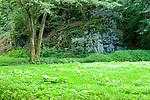 Europa, DEU, Deutschland, Rheinland-Pfalz, Hunsrueck, Oppenhausen , Ehrbachtal, Typische Landschaft, Baeume, Felsen, Natur, Umwelt, Landschaft, Jahreszeiten, Stimmungen, Landschaftsfotografie, Landschaften, Landschaftsphoto, Landschaftsphotographie, Tourismus, Touristik, Touristisch, Touristisches, Urlaub, Reisen, Reisen, Ferien, Urlaubsreise, Freizeit, Reise, Reiseziele, Ferienziele, Oppenhausen ist der westlichste Ortsbezirk der Stadt Boppard, der bis 2 km an die Mosel heranreicht und zum Niederkirchspiel gehoert. Der Ehrbach ist ein etwa 20 km langer rechter Nebenfluss der Mosel in Rheinland-Pfalz. Umgangssprachlich wird er gelegentlich mit der Ehrbachklamm gleichgesetzt, die jedoch nur ein 1,5 Kilometer langes Teilstueck des Mittellaufs ist. Quelle - https://de.wikipedia.org/wiki/Ehrbach<br /> <br /> [Fuer die Nutzung gelten die jeweils gueltigen Allgemeinen Liefer-und Geschaeftsbedingungen. Nutzung nur gegen Verwendungsmeldung und Nachweis. Download der AGB unter http://www.image-box.com oder werden auf Anfrage zugesendet. Freigabe ist vorher erforderlich. Jede Nutzung des Fotos ist honorarpflichtig gemaess derzeit gueltiger MFM Liste - Kontakt, Uwe Schmid-Fotografie, Duisburg, Tel. (+49).2065.677997, ..archiv@image-box.com, www.image-box.com]