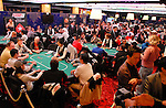 A view of the tournament area.